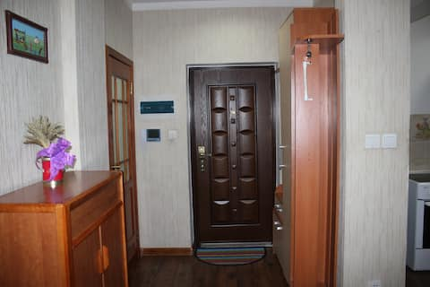 Full furnished 2 rooms apartment in clear area