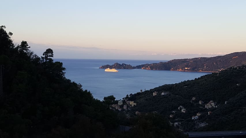 Living in a viewpoint on Portofino