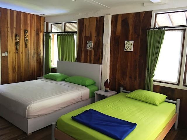 Triple Bedroom (1 King Size and 1 Large Single Bed)
