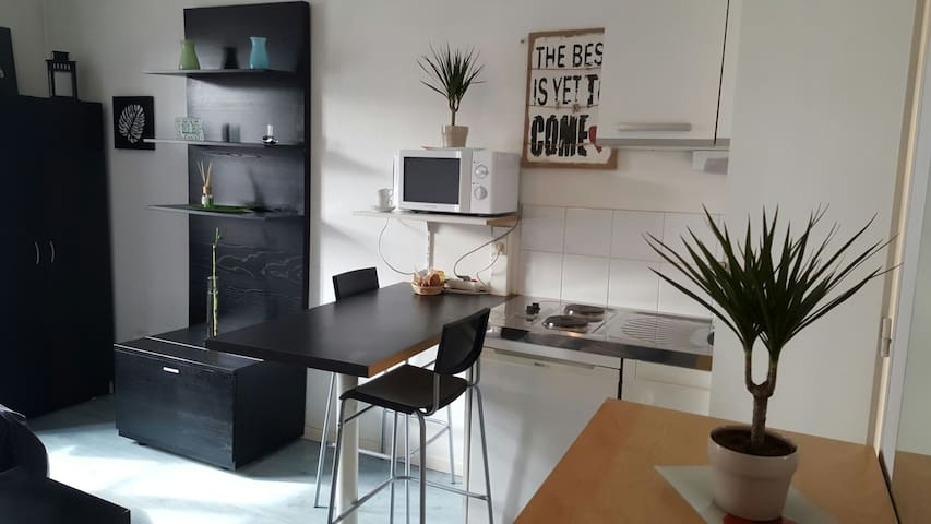 Studio HYPER CENTRE - Grenoble - Apartment