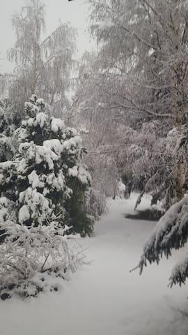 Inverno vista sul giardino