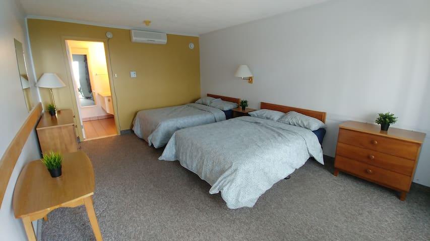 2 lits doubles, vue sur le fleuve, SDB privée, #46
