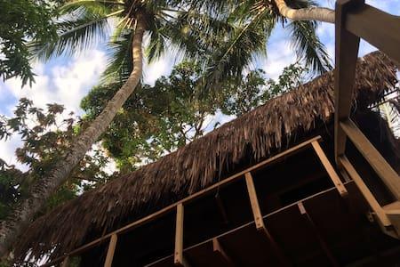 Suites Mangueiras - Pipa Beach