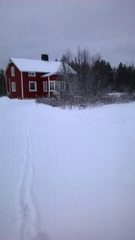 The house near Arctic circle