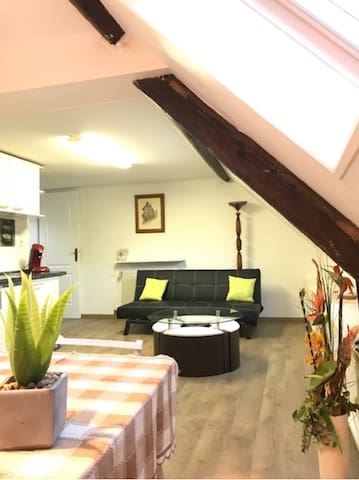 Coquet appartement au Coeur de Niederbronn-
