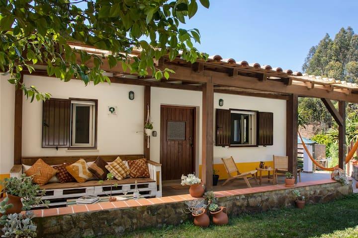 Charming 4 Bedroom house at quinta camarena