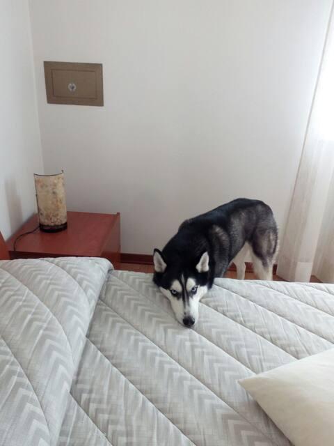L'alloggio DEL VESCOVO