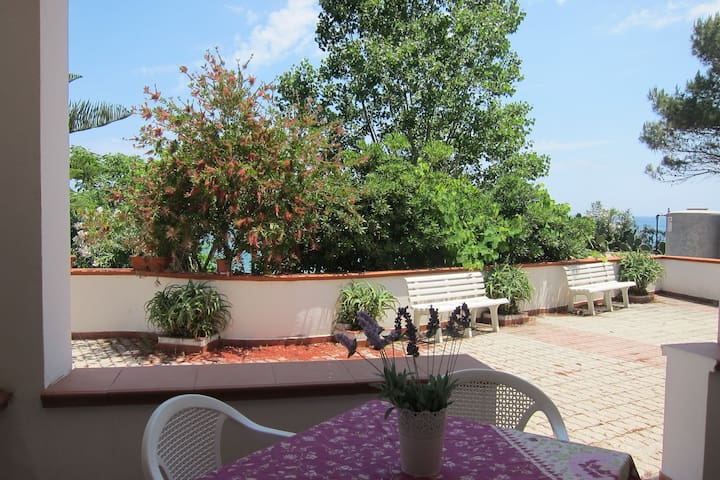 Two-room apartment on the ground floor with private terrace, 20m from the beach.
