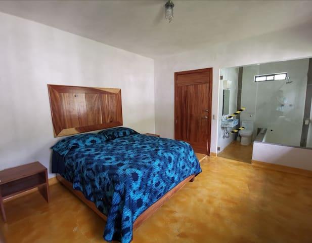 Habitación con cama Queensize y tina termal