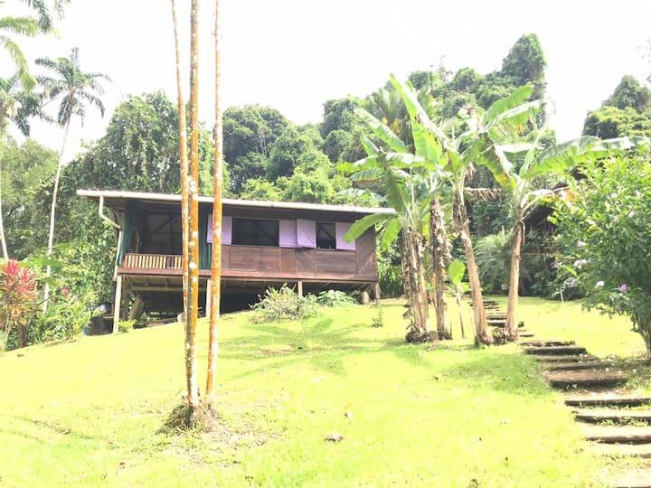 Casa Rustica, en medio de la selva (Casa Lila)