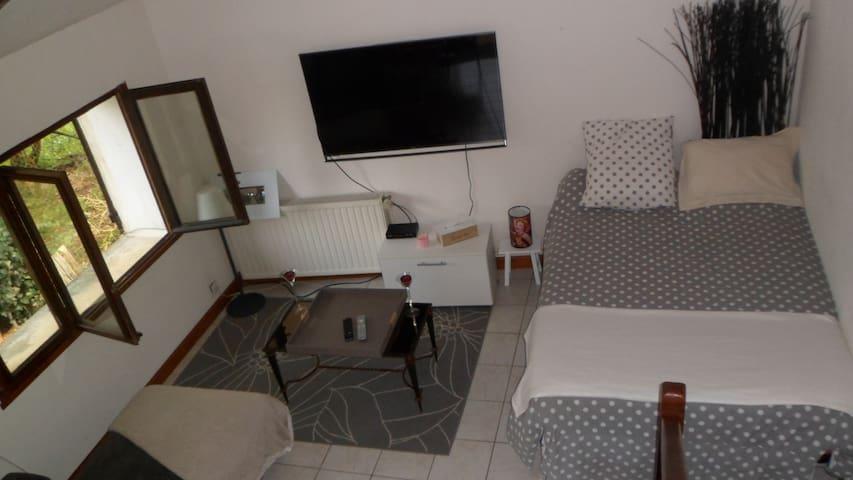 Grande pièce à vivre - Sarliac-sur-l'Isle - Apartment