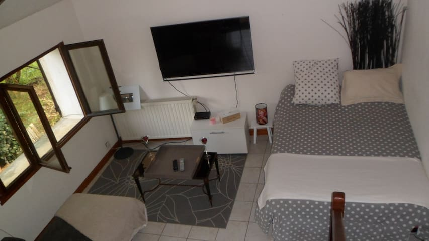 Grande pièce à vivre - Sarliac-sur-l'Isle - Apartamento