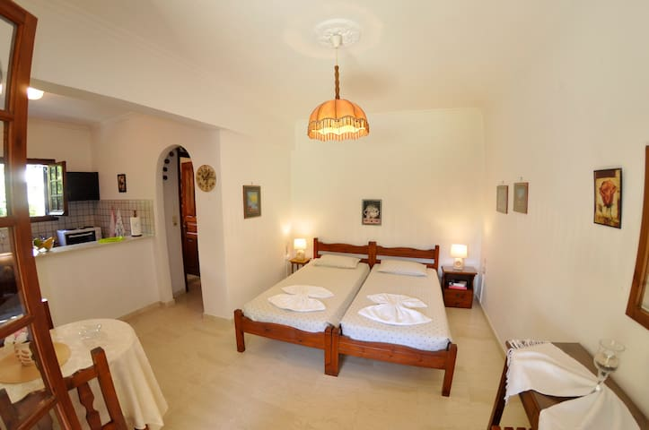 Alexandros Apartments & Studios (2-3 p.) - Agios Gordios - Apartment