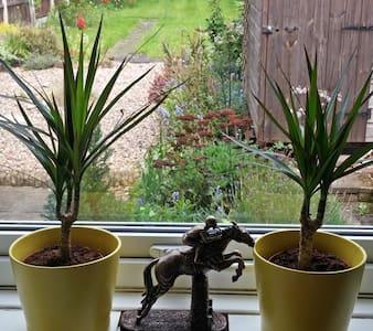 Quiet & Tidy Economic Single Room - Beeston - Huis