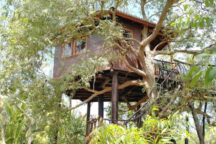 Treehouse - Jaywa Lanka Natural Resort-
