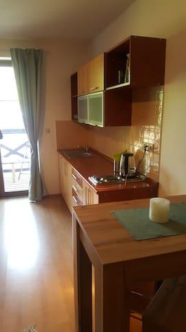 Železná Ruda apartmán