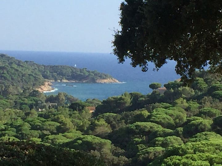 Villa Golfe de St Tropez : Un coin de Paradis