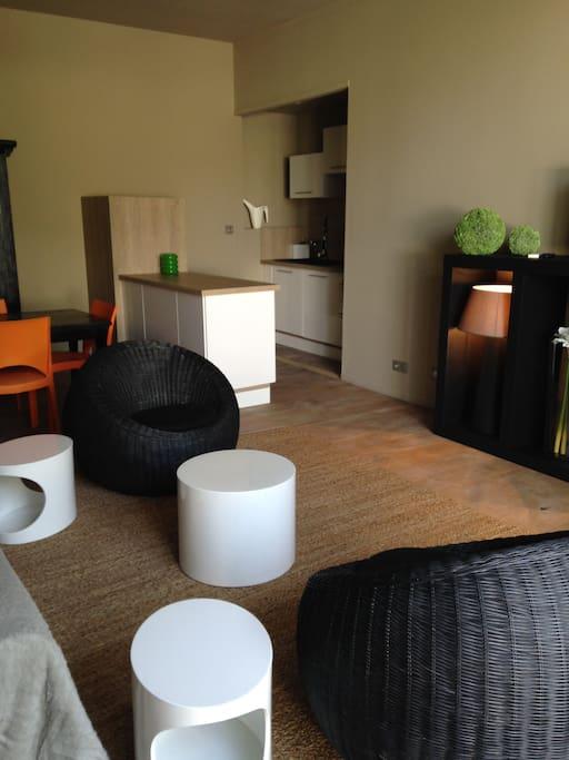 Avignon centre 5 mn maison type loft jardin spa lofts for Home salon avignon