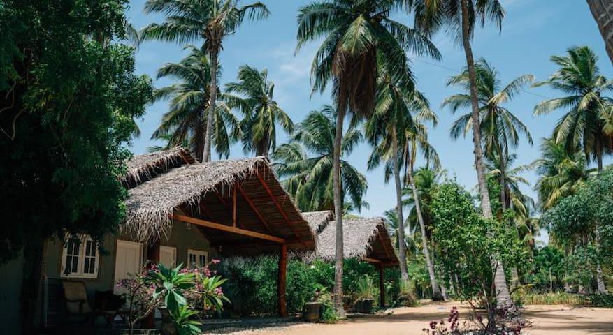 Kalpitiya Tropical Chalets With Lagoon View