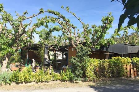 Camping Montsec - Apartamento 1 - (4 Adultos) - Terradets