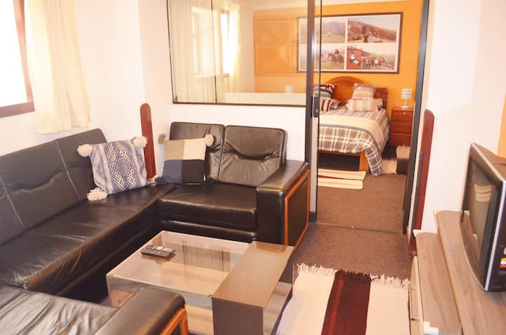 CONDOR SUITES Nice, Large Centrally Located Apt