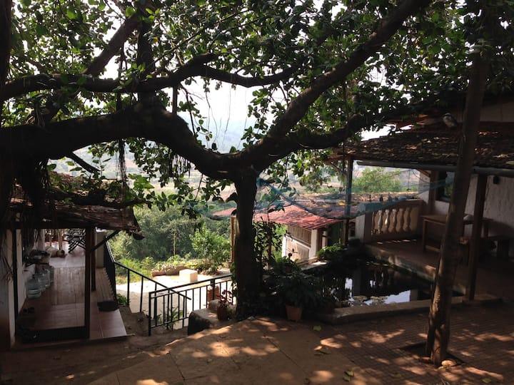 Ecologically sensitive retreat! A home away home