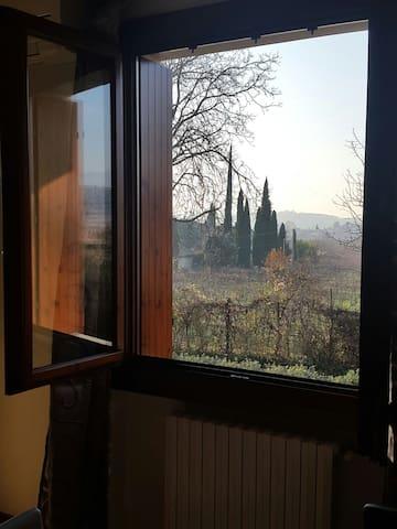Tranquillità a Negrar di Valpolicella, Verona