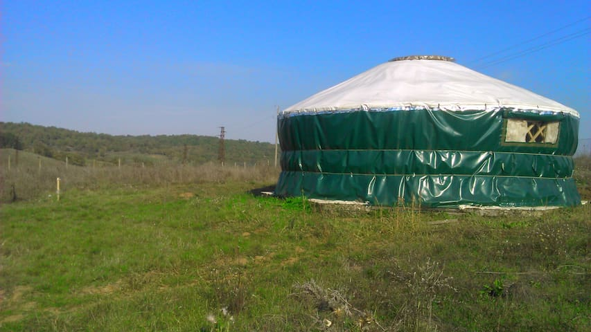Yurt in the Yurt