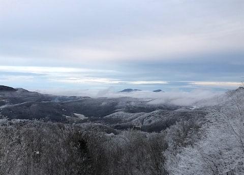 Ski In-Ski Out Condo on Beautiful Sugar Mountain