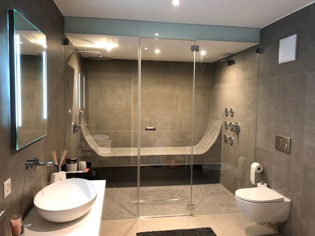 Das Badezimmer ist für die Gäste im Untergeschoss gedacht. Das Bad Besitzt Dampfbad, Regendusche und Kaskadendusche.
