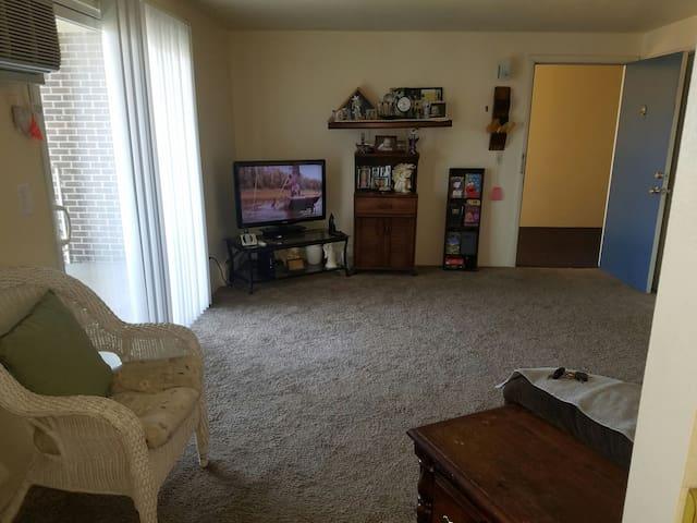 Very nice one bedroom - Denver - Pis