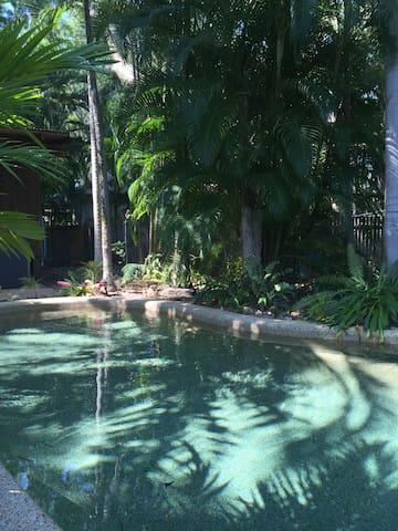 Tropical garden oasis home - Clifton Beach - Dům