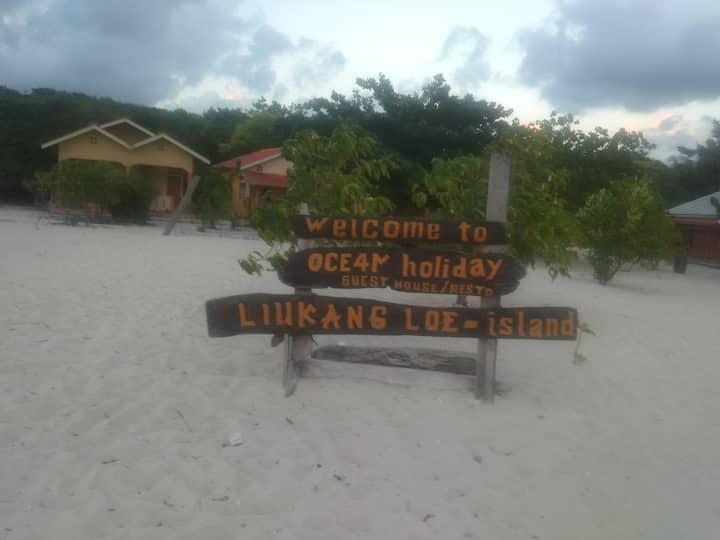 Ocean holiday