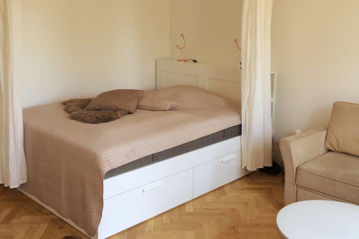 Big comfortable room with balcony, Copenhagen