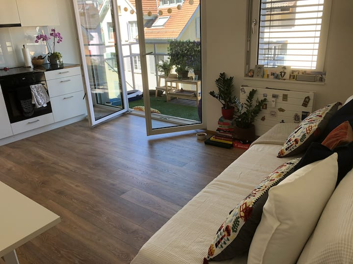 Pet friendly in the city center! 15m walking to HB