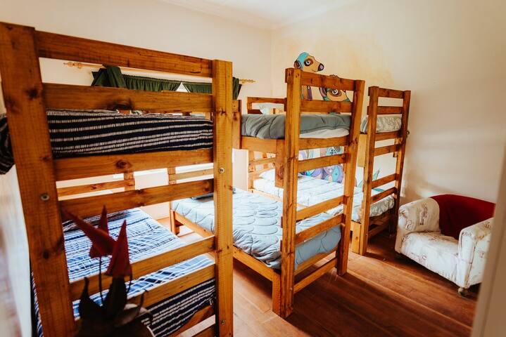 Meerkat - dormitory