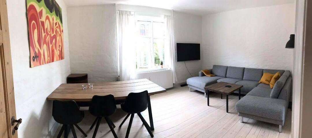 Cozy apartment in Odense city