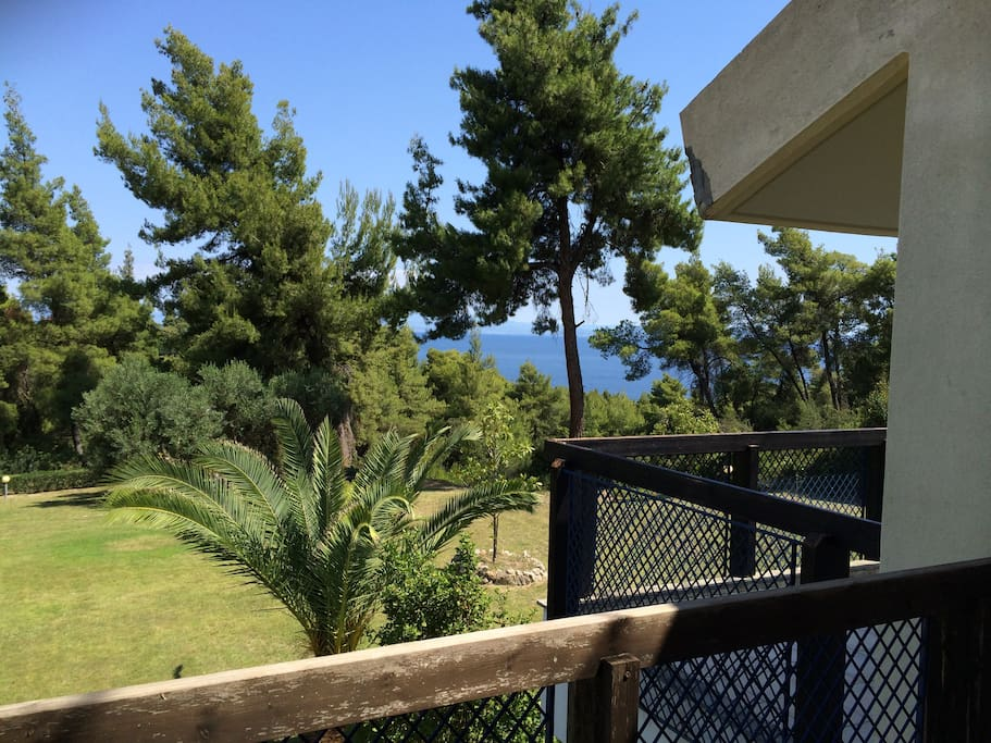 View from the bedroom's balcony