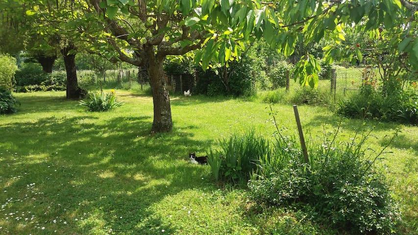 Nancy enjoying our orchard