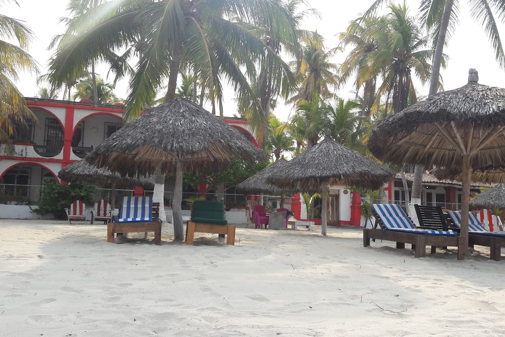 Comodas y agradables palapas con camastros y sillas de playa