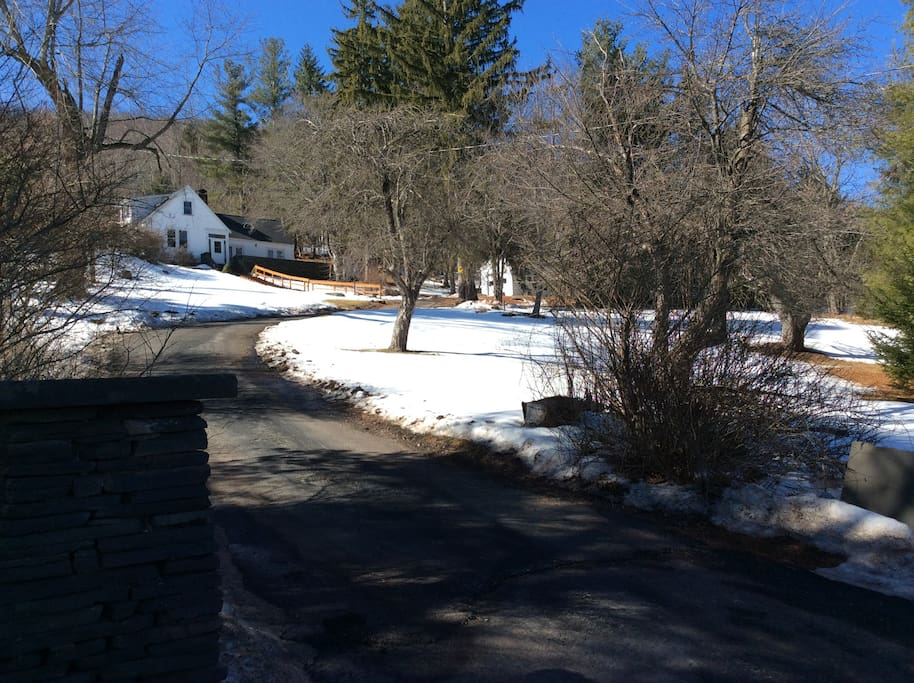 View From Route 296 with oversized u-shape driveway in front, very private setting.