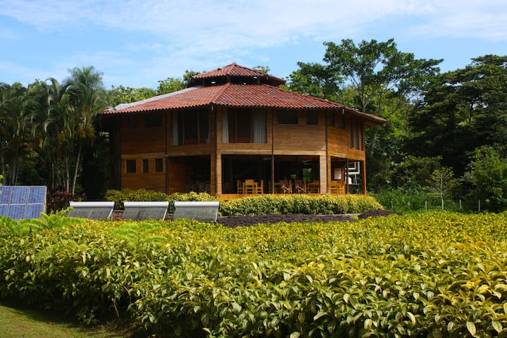 Macaw lodge 450 accres :Peace surrounded by Nature - Carara - Cabane