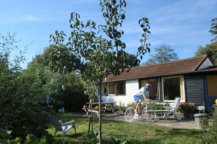 Verstop je even voor de bewoonde wereld... aan de Langewijk 170 in het Drentse dorpje Elim - Elim - キャビン