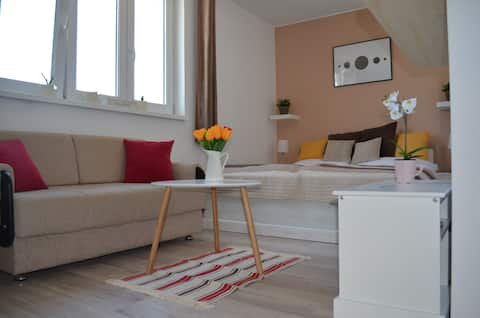 Scandinavian Studio Apartment in city center