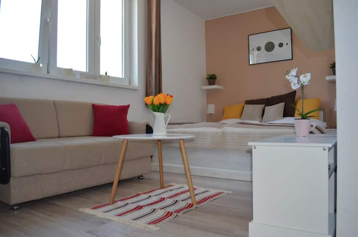 Scandinavian Studio Apartment in city center
