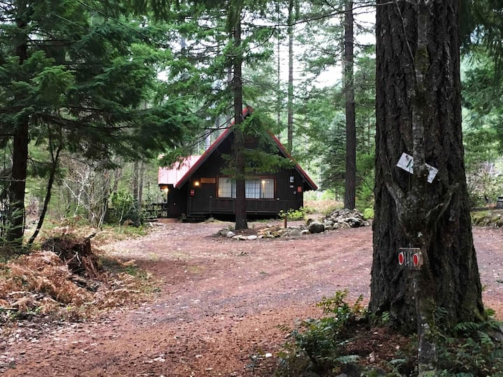 Cozy Cabin close to Mt. Rainer, The Mt is Calling!