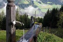 Herbst im Alpbachtal