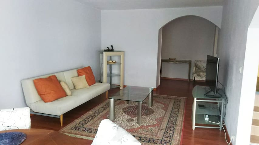 Comfortable big apartment in Saint Genis Pouilly