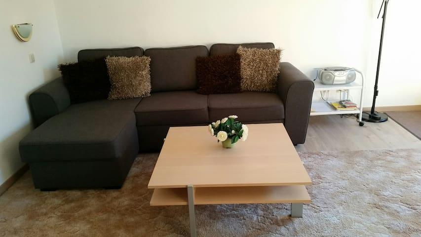 gemuetliche 2-Zimmer Wohnung - Schönwald im Schwarzwald