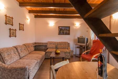 Apartment 2 on the mountain Tara - Mitrovac